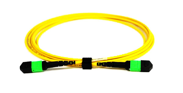 24 Polarity a MTP Patch cables